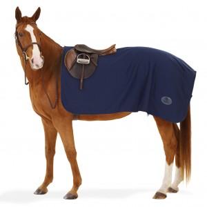 Centaur® Turbo-Dry™ Exercise Sheet
